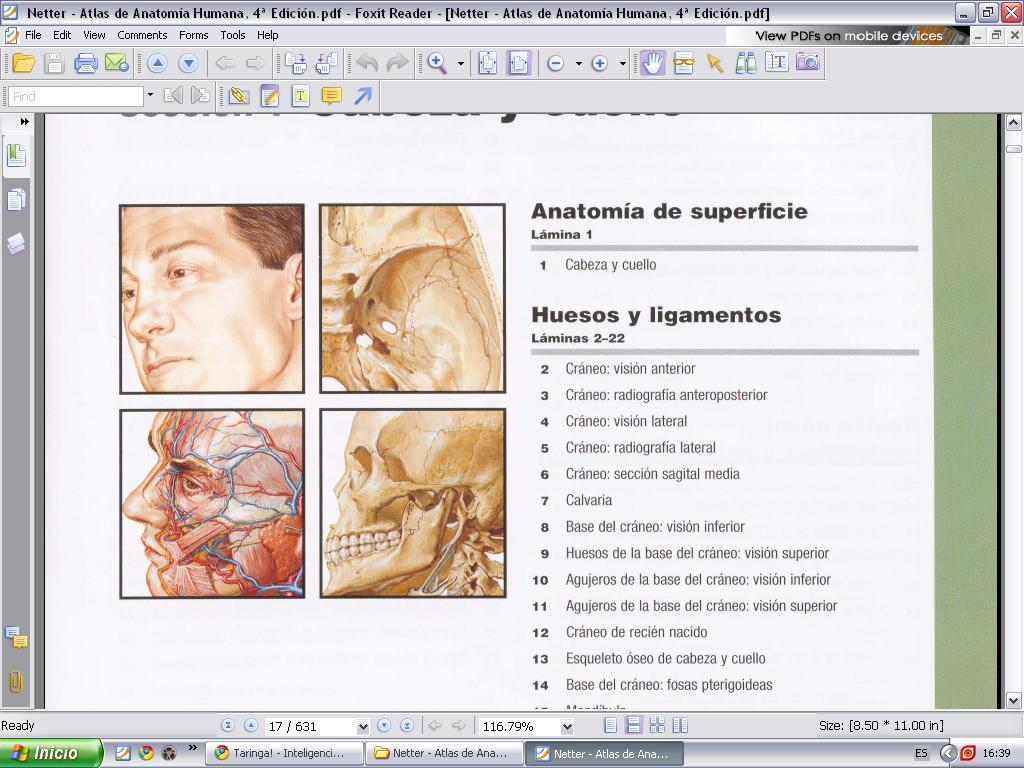 Atlas De Anatomia Humana 4º Edición | De todo un poquito :3